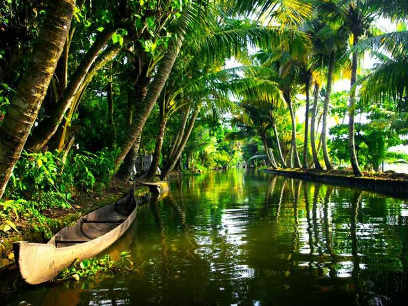 Kerala Tour Packages From Cochin