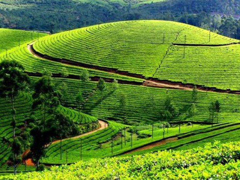 Best 15 Coolest Places In Kerala Visit During Summer In Kerala Blog