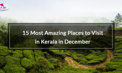 15 Most Amazing Places to Visit in Kerala in December
