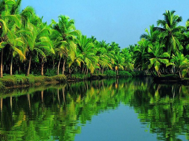 List Of Tour Operators In Kerala