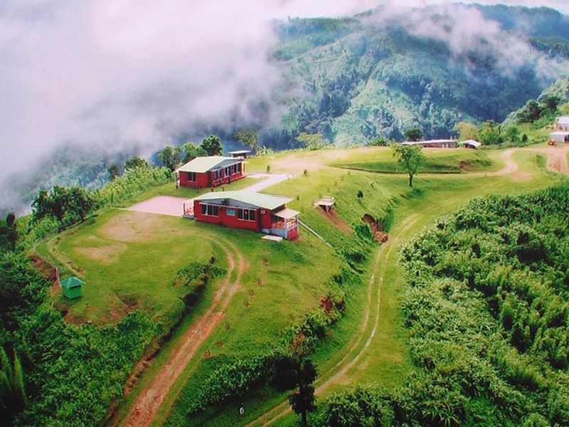 Tour Operators In Ooty