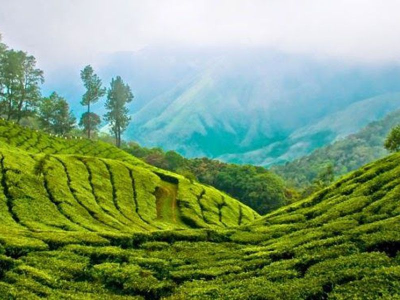 Idukki Tourist Places
