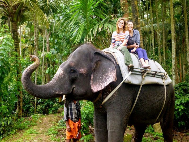 Blogs About Best Tourist Places In Kerala