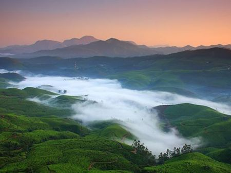 tour packages from munnar