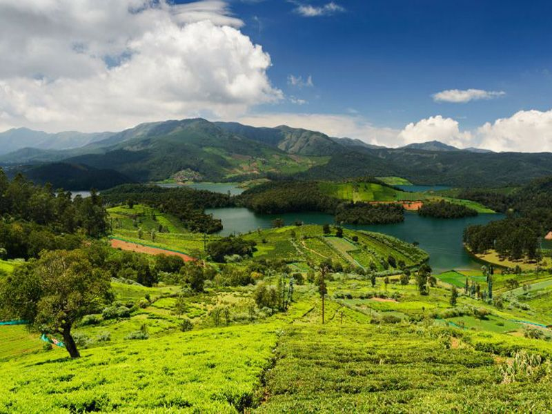 Tips For Hill Station For South India For Honeymoon Vacation
