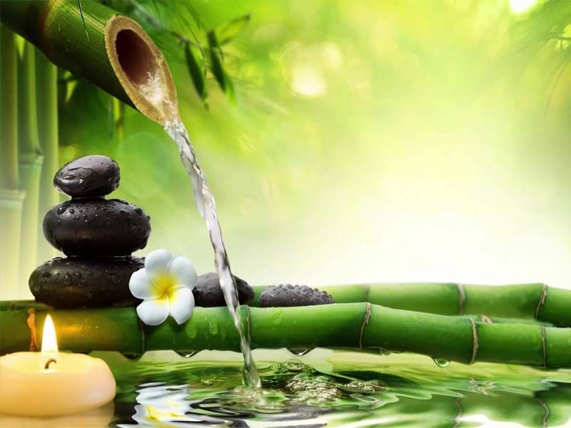 Blogs For Top Ayurvedic Treatment In Kerala