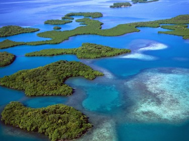 Mangrove islands, Belize. The Belize Western Caribbean Barrier Reef, 600 km long, is the longest chain of coral in the North hemisphere and the second in the world.