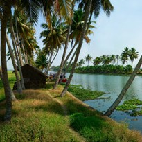 <span>Day 05: </span>Full day explore backwaters and village Channankiri Homestay