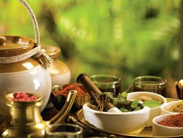 Best Time for Ayurvedic Treatment