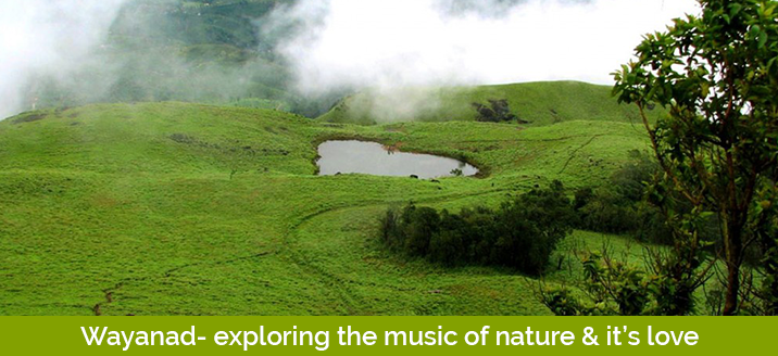 Wayanad- exploring the music of nature and it's love