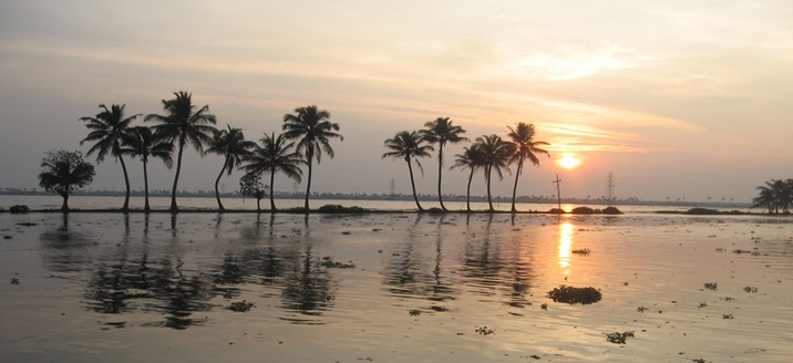 The Specialty of Backwaters in Kerala