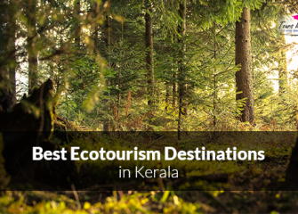 Best Ecotourism Destinations in Kerala