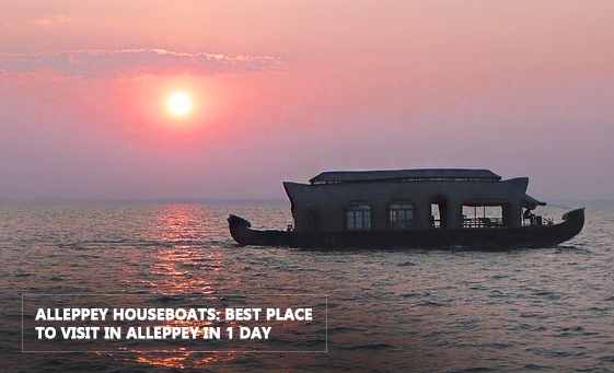 Places to Visit in Alleppey in 1 Day