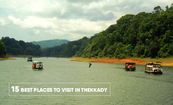 15 Best Places to Visit in Thekkady
